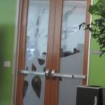 SOlarCityEtchLogo_Door