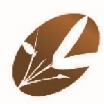 Custom logo design by Iconography Studios