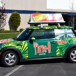 3_mini_vehiclewrap_geekwraps_iconography