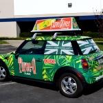5_mini_vehiclewrap_geekwraps_iconography